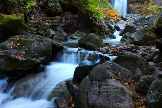 自然の写真・画像素材[384456]