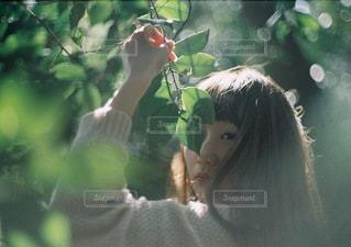 女性の写真・画像素材[9116]