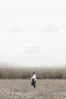 女性の写真・画像素材[9095]