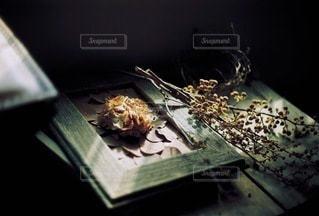 花の写真・画像素材[9071]