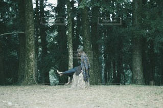 女性の写真・画像素材[9056]