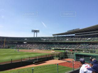 野球 - No.302787