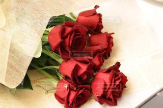 花の写真・画像素材[302783]