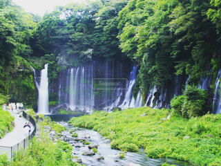 滝の写真・画像素材[303044]