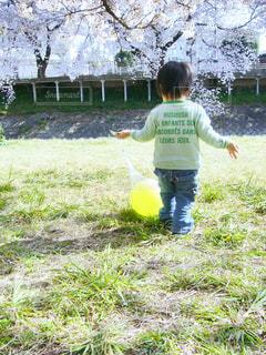 子どもの写真・画像素材[384638]