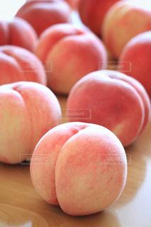 ピンクの写真・画像素材[691596]