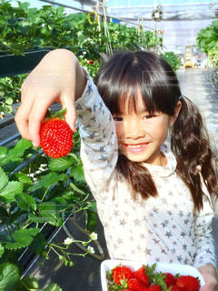 庭園の女の写真・画像素材[739243]