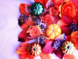 色とりどりの花のグループの写真・画像素材[803643]