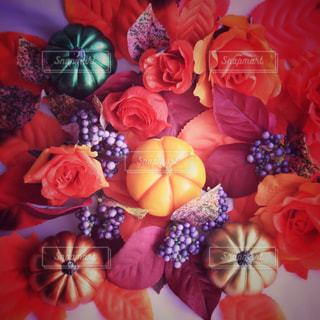 色とりどりの花のグループの写真・画像素材[803644]