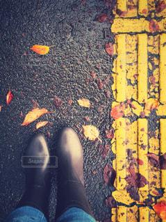 足のペアを保持している女性の写真・画像素材[817579]