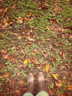 草の上に座ってピザ カバー フィールドの写真・画像素材[817584]