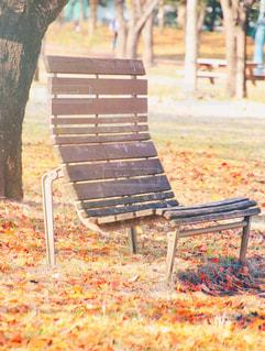 木製フェンスの上に座って空の公園ベンチの写真・画像素材[863491]