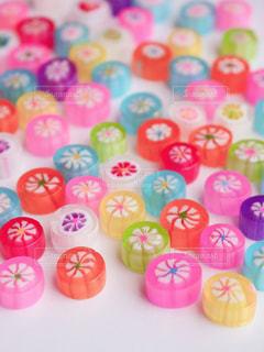 ピンクの花のグループの写真・画像素材[1013270]