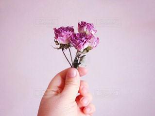 花を持っている手 - No.1022578