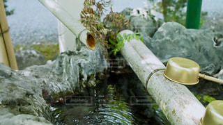 手水舎の写真・画像素材[1140045]