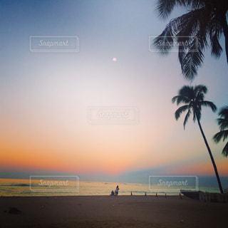 海の写真・画像素材[303990]
