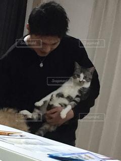 猫を持って男の写真・画像素材[864392]