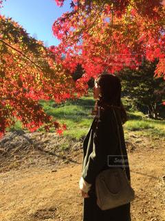 木の隣に立っている人の写真・画像素材[943343]