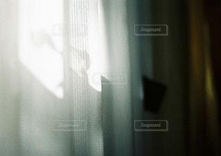 太陽の写真・画像素材[2143]