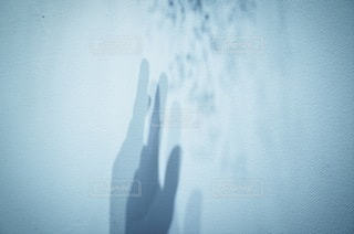手 - No.2098