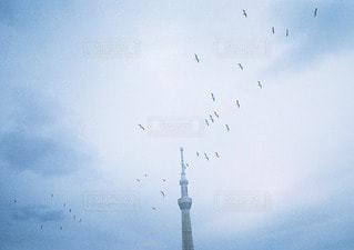 空の写真・画像素材[11096]