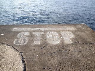 No.304610 海