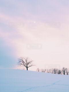 冬 - No.304659