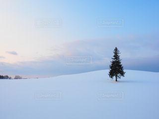 冬の写真・画像素材[308984]