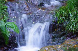 水の写真・画像素材[304816]