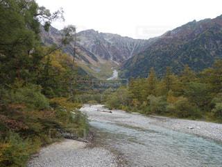 山の中腹に木とパス - No.820290