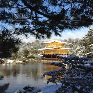 雪の写真・画像素材[308942]