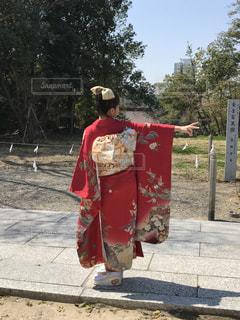 桜 - No.427224