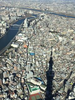 No.306494 東京