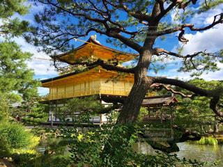 京都の写真・画像素材[307119]