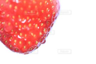 食べ物の写真・画像素材[318920]