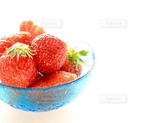 食べ物の写真・画像素材[319008]