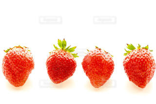食べ物の写真・画像素材[319009]