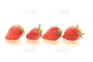 食べ物の写真・画像素材[319010]
