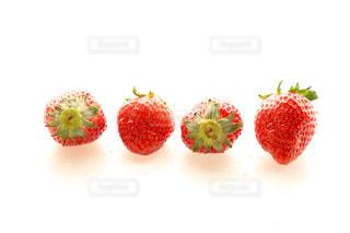 食べ物の写真・画像素材[319011]