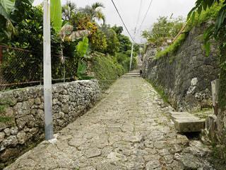 首里城下の石畳の道の写真・画像素材[805324]