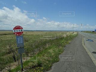 青空とどこまでも続く道の写真・画像素材[1384849]