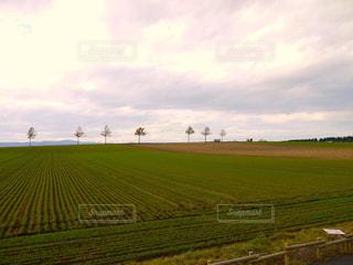 メルヘンの丘よりの写真・画像素材[1614572]