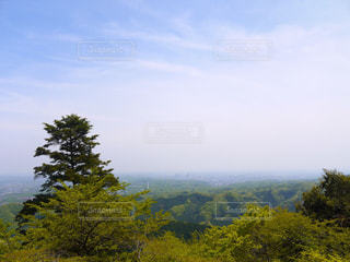 高尾山山頂からの眺望の写真・画像素材[1616530]