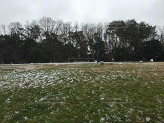 冬の写真・画像素材[315962]