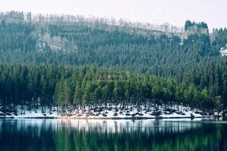 自然の写真・画像素材[8127]