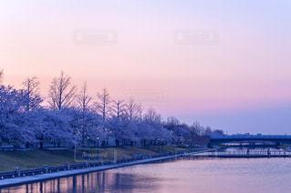風景の写真・画像素材[8111]
