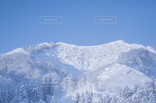 冬の写真・画像素材[8100]