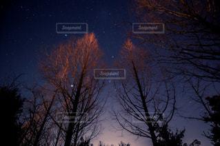 夜空の写真・画像素材[8099]