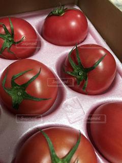 プリプリのトマト。 - No.1239488