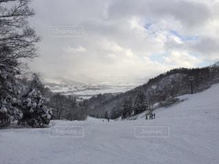 冬の写真・画像素材[309436]
